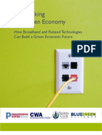 Networking the Green Economy
