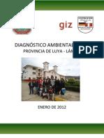 DIAGNÓSTICO AMBIENTAL LOCAL - LUYA.pdf