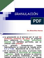 t.06 Granulacio