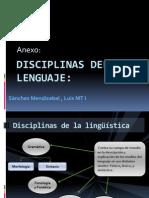 Disciplinas Del Lenguaje