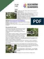 Curso Modular Certificado de Diseño de Permacultura