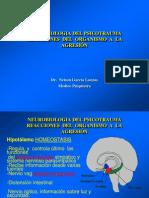 pSICOTRUMA 2012