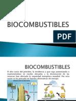 Bio Combustibles