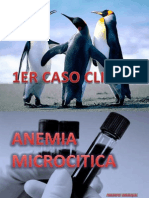 Anemia Microcitica Dr. Fernandez