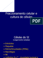 TP03TecnicasImunologia
