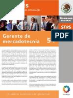 Perfil54Gerente de Mercadotecnia