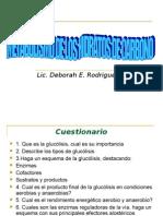40951302-Bioquimica-Glucolisis