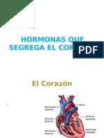Hormonas Que Segrega El Corazon