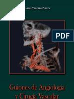 Cirugia Vascular