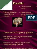 Evento Vascular Cerebral