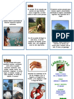 Triptico Flora y Fauna[1]