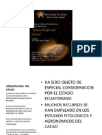 m Suarez Mayo Del 2010 Arqueologia Del Cacao