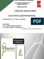 Exp. Aud Gubernamental[1]