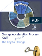 6 the Change Acceleration Process