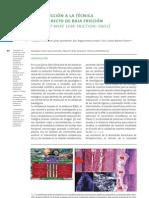 Articulo Ortodoncia
