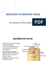 6. Lecture on the Histology of Peripheral Nerve and Ganglia by Dr. Roomi