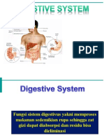 Anatomi Fisiologi Digestive System