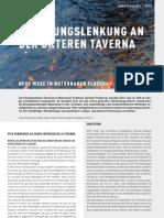 Werdenberg et. al  (2012) - Strömungslenkung an der Taverna