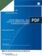 Análise de Ambientes estratégicos e elaboração de cenários