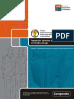 Prevencion Del Delito en Zonas Urbanas Y Juventud en Riesgo ESP