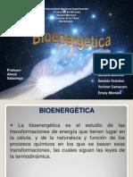 bioenergetica expoooo (3)