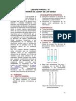 Laboratorio No 10. Mecanismos de Accion de Los Genes (1)