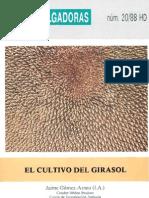 Hd El Girasol