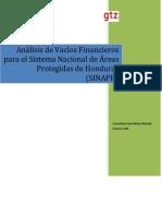 Documento Final Analisis Vacios Financieros Sinaph 2 (2)