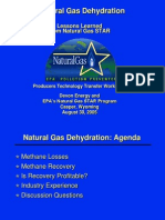 4 Natural Gas Dehydration