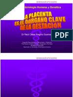 CLASE 12 - Anat y Fisiolo Placenta CpURP [Modo de Compatibilidad]