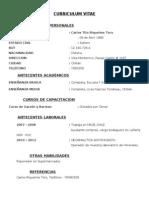 Curriculum Vitae 6