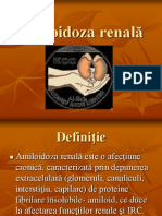 Amiloidoza renală