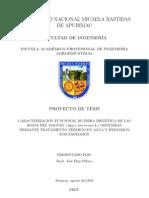 Proyecto de Tesis Cuantitativo-Estructura Referencial
