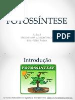 1230022_fotossÍntese