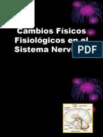Cambios Físicos Fisiológicos en el Sistema Nervioso