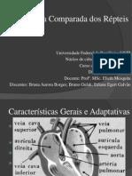 Embriologia dos Répteis