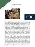 Medicina Mapuche