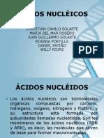 ACIDOS NUCLEICOS (2)