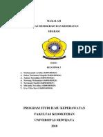 Makalah.demografi Kelompok Migrasi