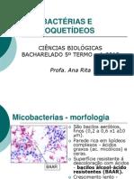 Micobacterias e Espiroquetideos