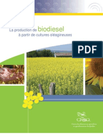 La production de biodiesel à partir de cultures oléagineuses