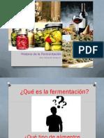 historia de la fermentación