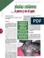 Neoplasias Cutaneas de Perros y Gatos