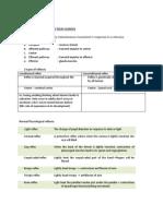 Neuro Exam Scheme