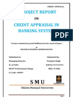 50681920 a Project Report on Credit Appraisal