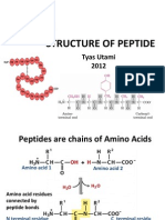 Bk Structure of Peptide Tu 2012