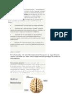 Cerebro Biologia