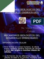 Clase I MECANISMOS BIOLÓGICOS DEL DESARROLLO EMBRIONARIO