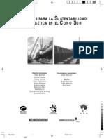 Desafios Para La Sustentabilidad Energetica en El Cono Sur