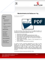 Newsletter-Año-2-Volumen-10-Febrero-2011